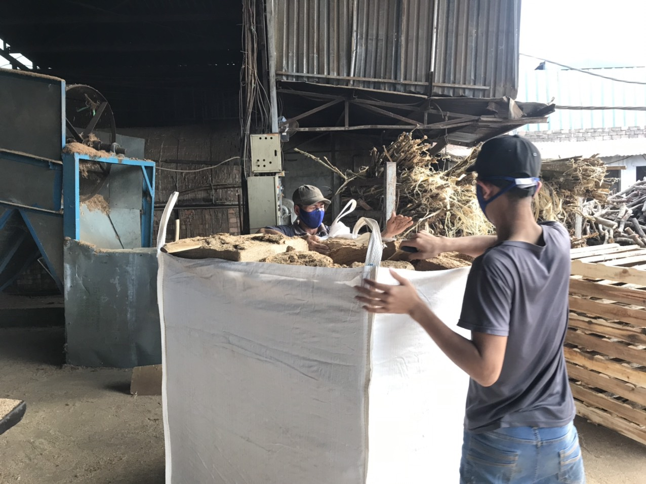 wood-sawdust-factory-world-export