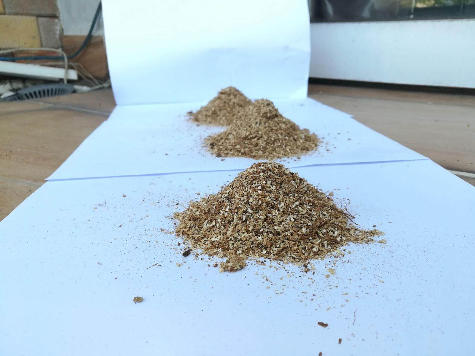 acacia-sawdust-world-export