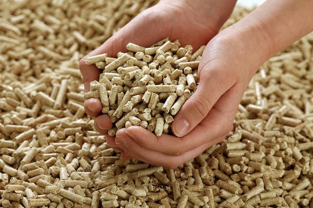 wood-pellet-world-export