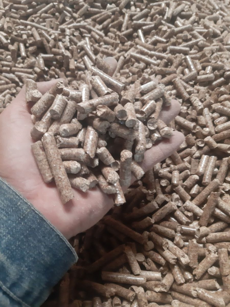pellet-world-export