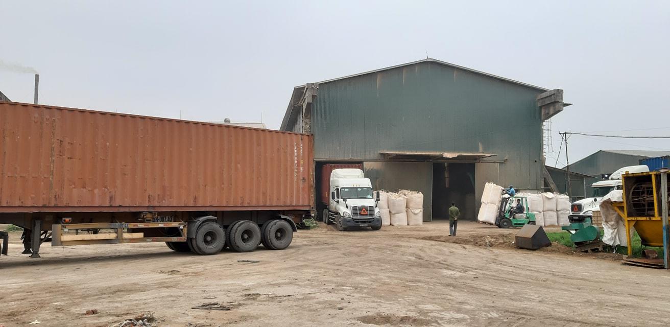 wood-powder-world-export